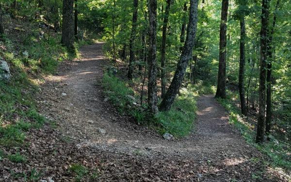Hot Springs NP Trail Run